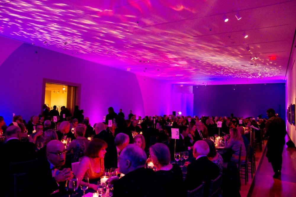 Eggsotic+Events+Lighting+and+Decor+Michener+Art+Museum+Doylestown+Bucks+County+PA+Celestial+Gala+Starry+Night+Sky+Event+Lighting+07.jpg