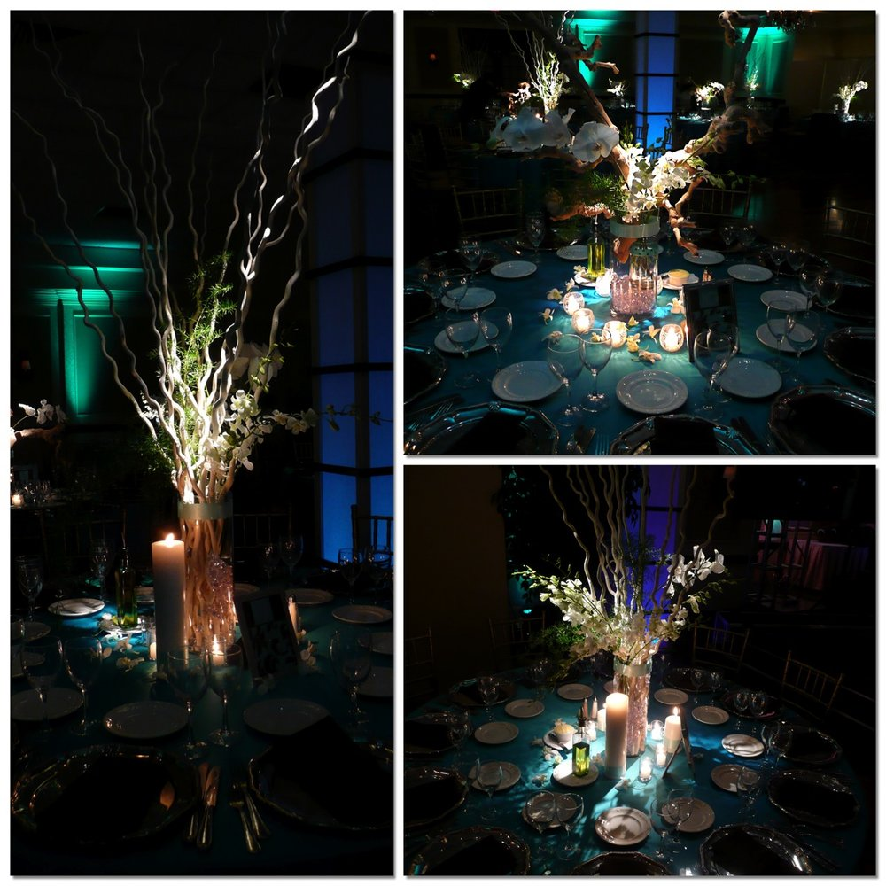Event+Decor+Design+Lighting+NJ+NYC+Eggsotic+Events+NJs+Best+Event+Decorator+Event+Lighting+Event+Design+Wedding+Bar+Mitzvah+Bat+Mitzvah+Gala+Fundraiser+Social+Corporate+09.jpg