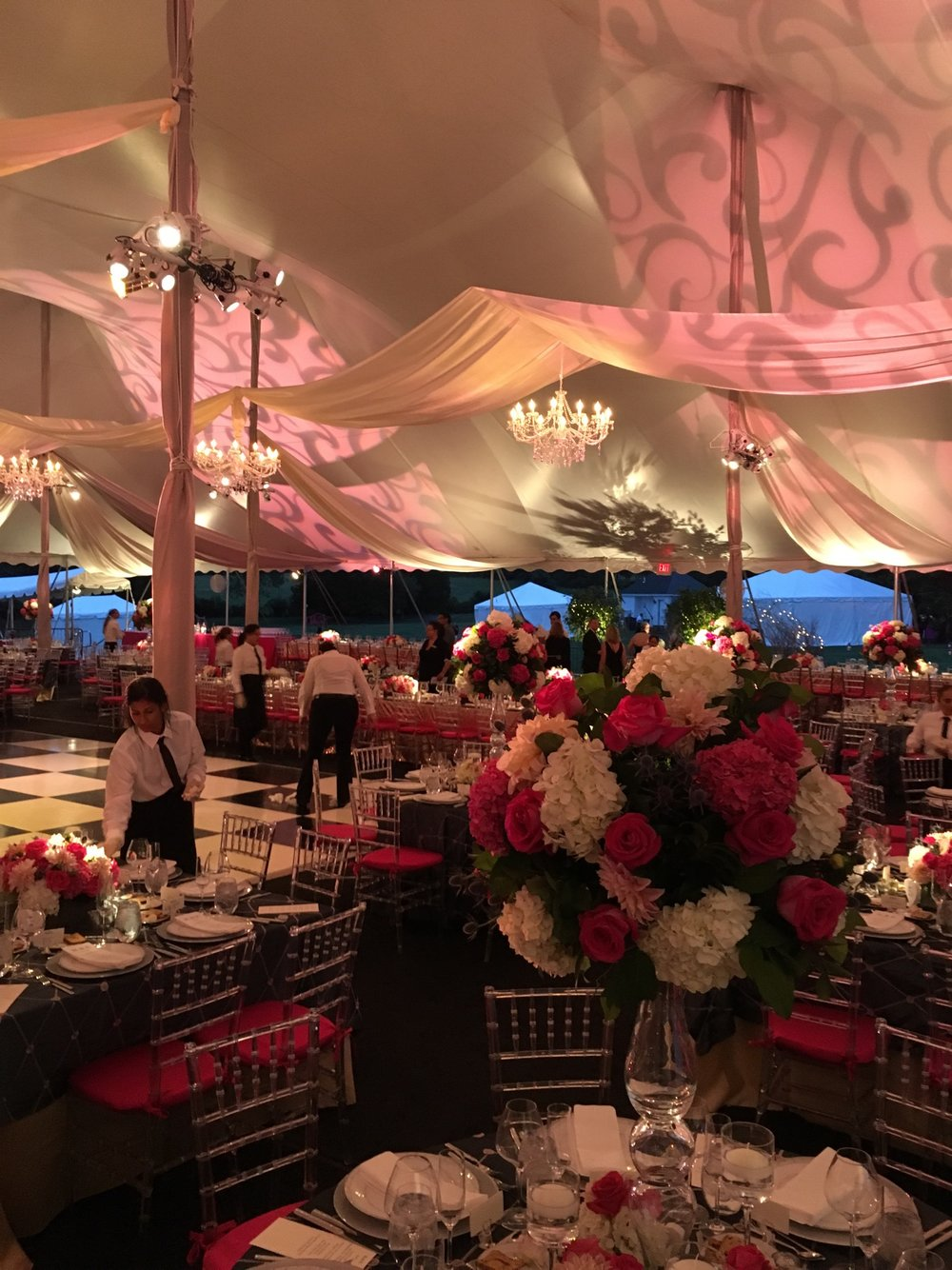 NJ+event+decor+lighting+design+Eggsotic+events+event+rental+rentals+installation+wedding+ceiling+treatments.jpg