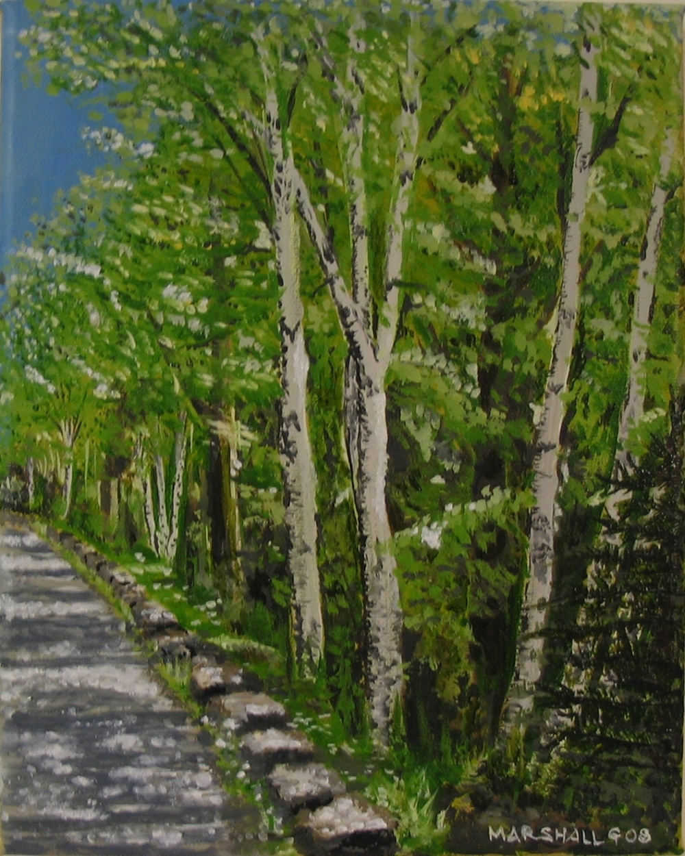 Birches on the Carriage Road
