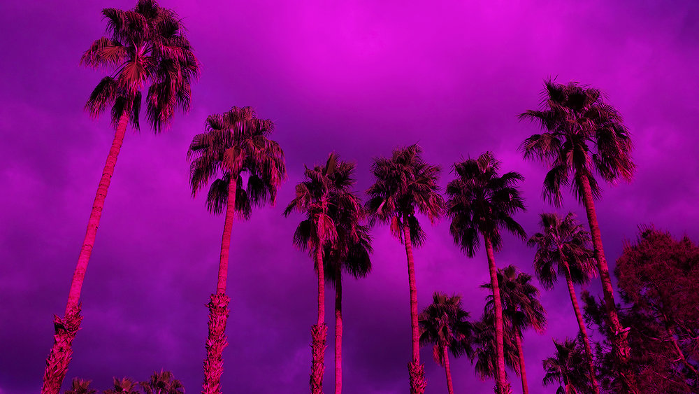 Palm Springs - Robert Lang photography