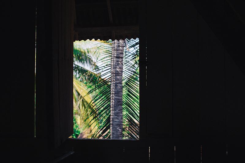 @captainbarto-CaptainsCamera-Waves-Book2-IvyMiller-@ivuss513.jpg