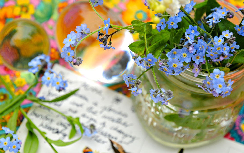 Forget Me Not - 1.jpg