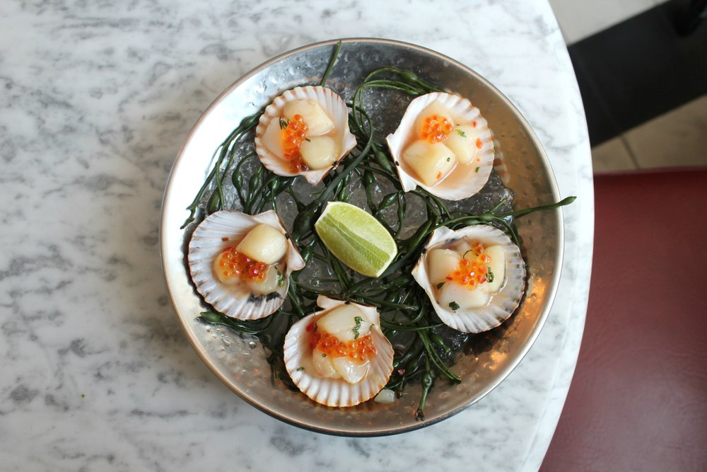 Scallop Crudo 2.JPG