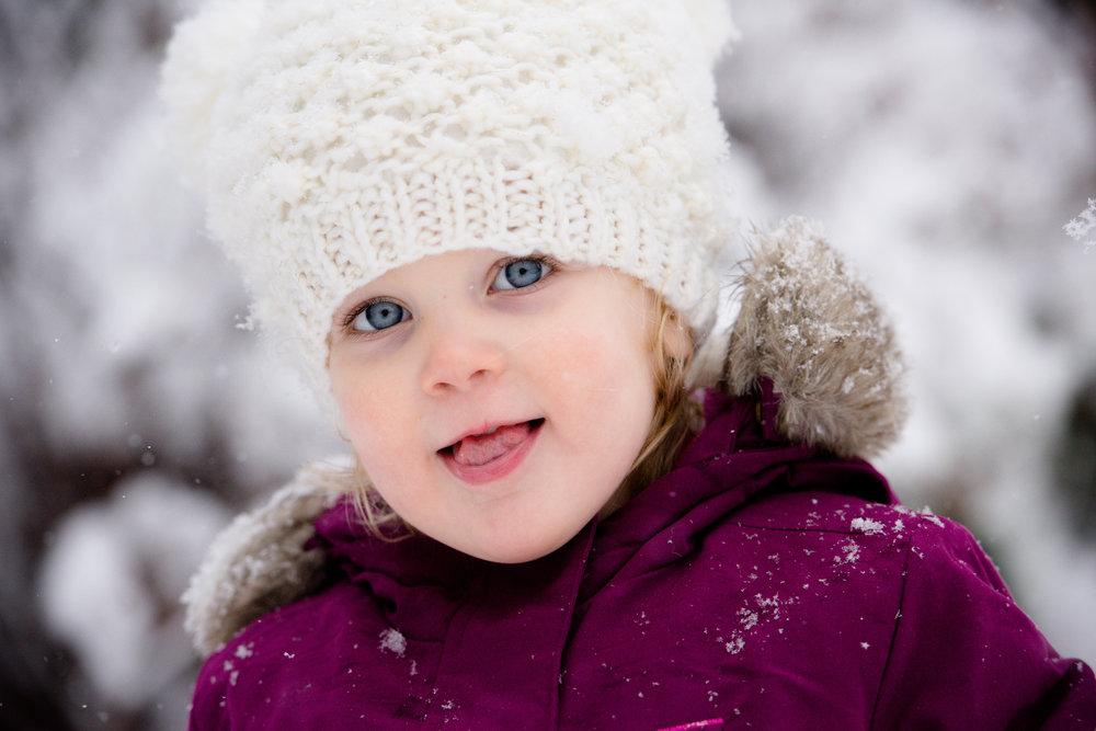 JuliaMatthewsPhotography_MadisonWisconsinFamilyPhotography_Families-18.jpg