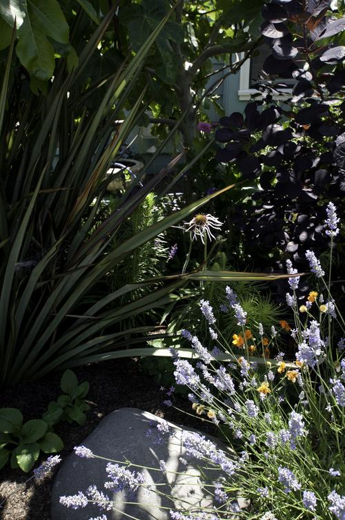 healing-garden-06.jpg