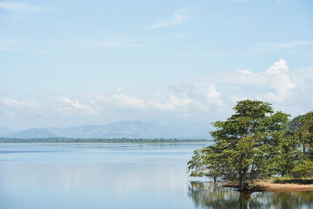 160116-Sri-Lanka-0884.jpg