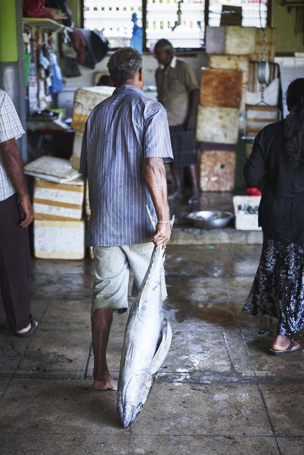 160116 Sri Lanka 0301.jpg