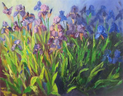 Light & Shadow Irises 72 7.jpg