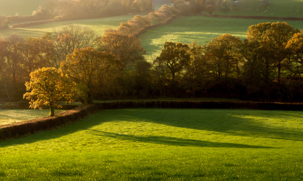Autumn sunrise in Devon