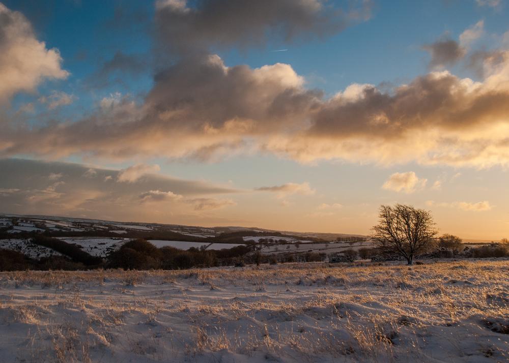 Snowy Exmoor dawn
