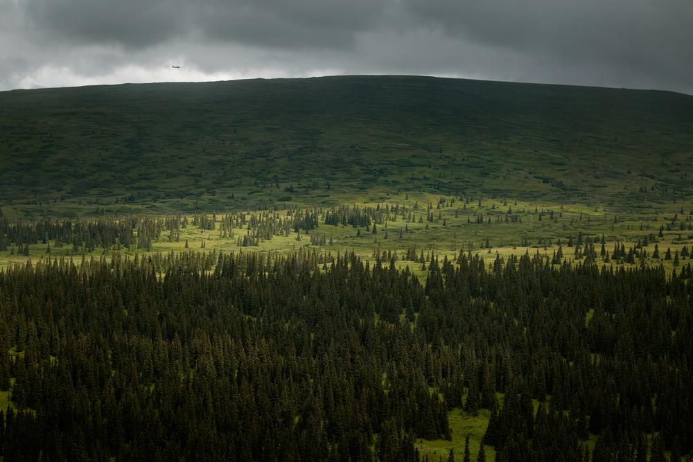 WORK With Plane - Aerial Tour - 7L3A5379 - Alaska Landscape.jpg