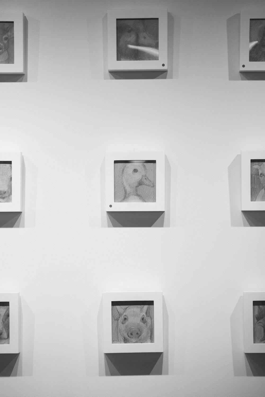 Tim Jaeger 10 - Event Photography - Brad Rankin 3.jpg