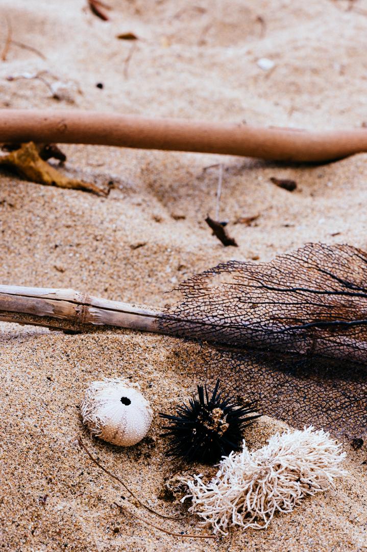 Puerto Rico beach pavo textiles-62.jpg