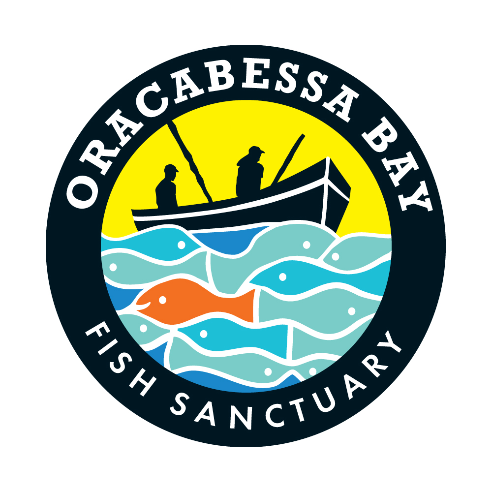 Oracabessa Bay Fish Sanctuary