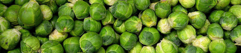 brussels-sprouts-22009_1920 (1) copy.jpg