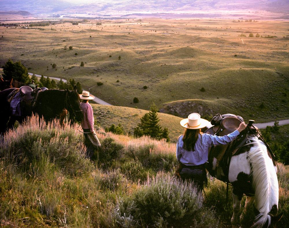 montana101.jpg