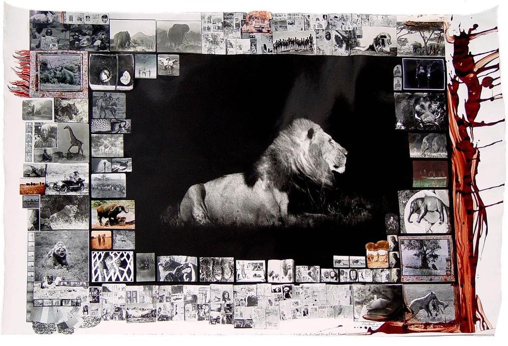 black-manned-lion.jpg
