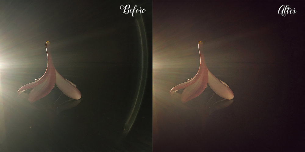 Butterfly Rose Designs - Ray of Light - A Snapseed Edit - Before and After
