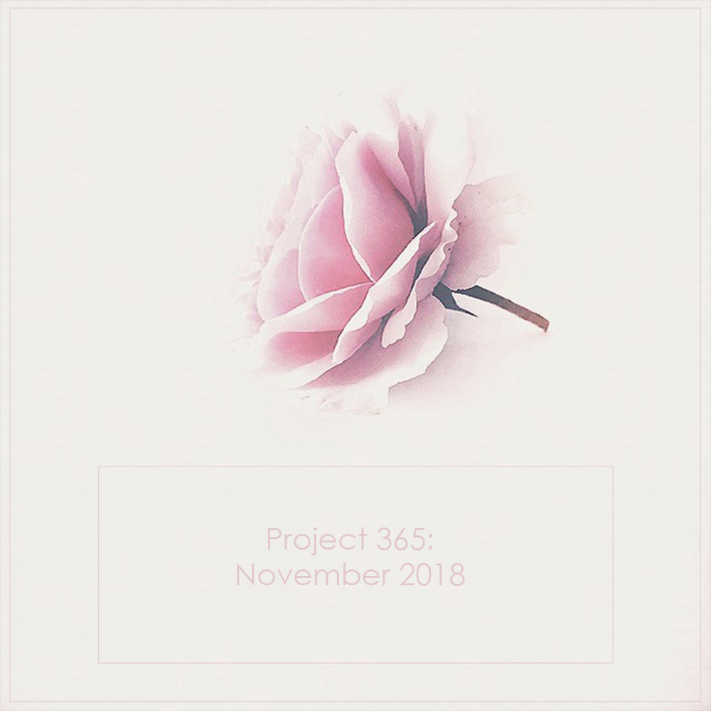Butterfly Rose Designs November 2018
