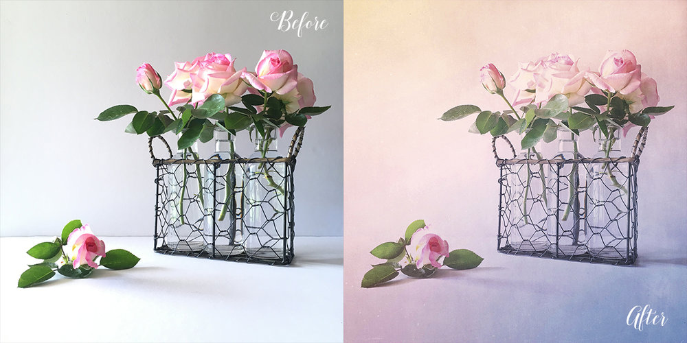 Before and After Roses in Bottles.jpg