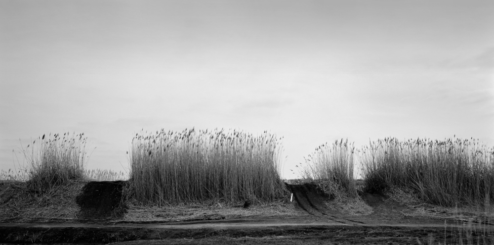 Bay grass and ATV trails, Tinicum Township, Pennsylvania. One of two images from the Watershed series selected for an award by juror Heather Campbell Coyle for the Perkins Center for the Arts exhibition Photography 35. The show opens January 31st and runs through February 26th and is free and open to the public.