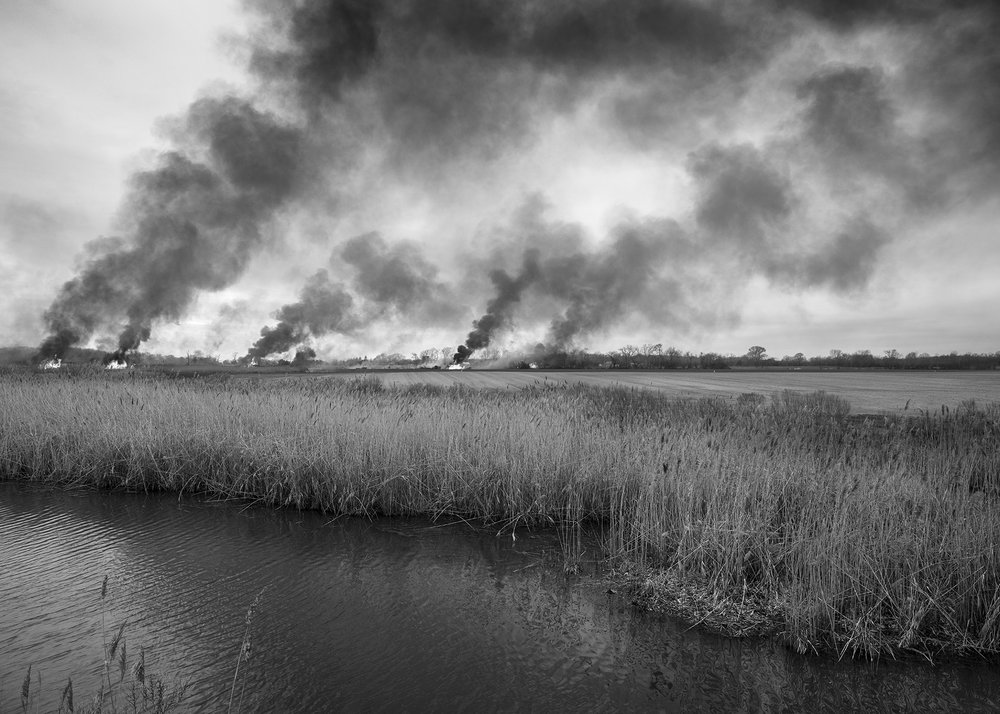 Controlled Burn, along Alloway Creek, New Bridge Road, Salem County New Jersey.