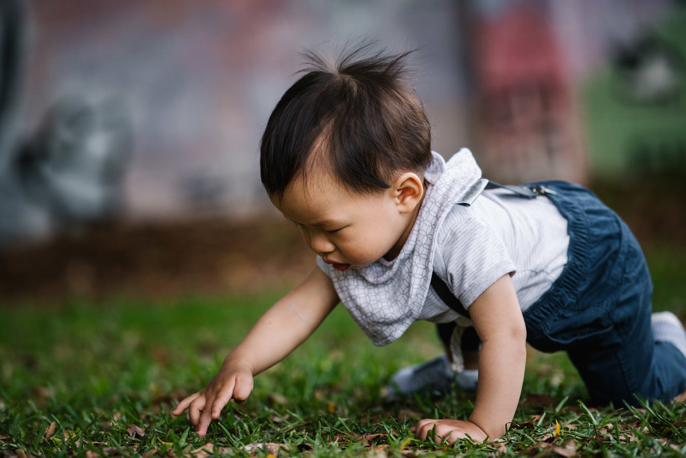 Baby crawling in grass at Elkington Park