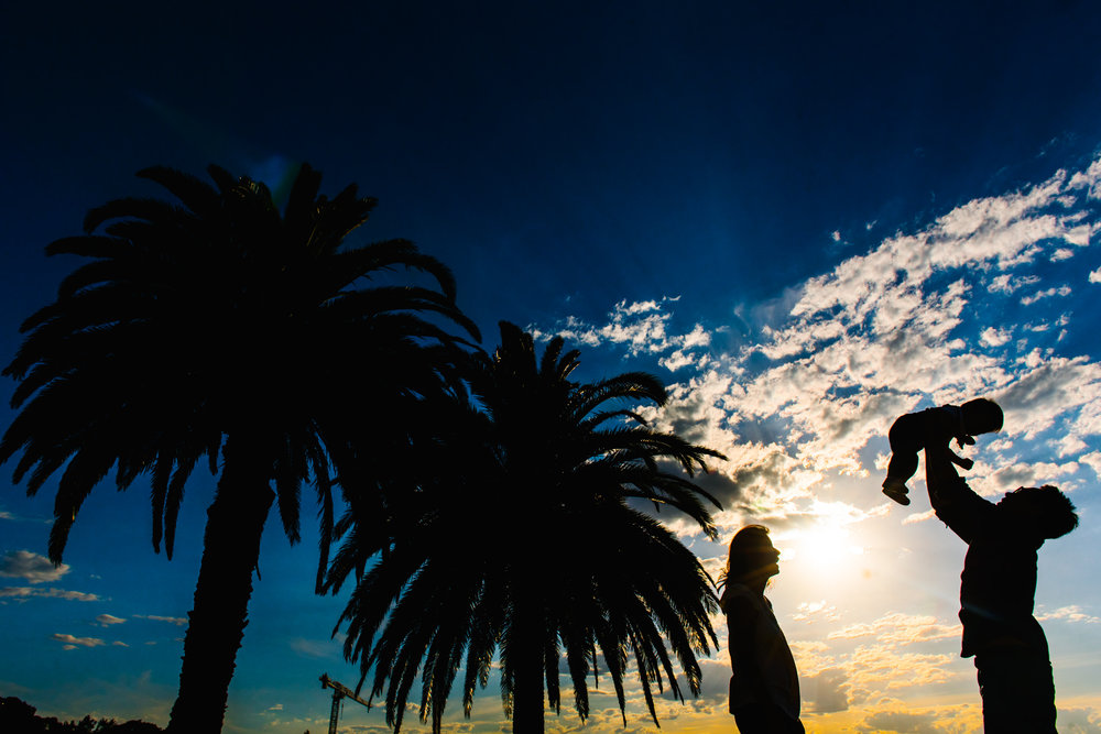 Palm tree and family silhouette