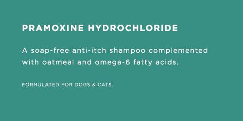 shampoo_004.jpg