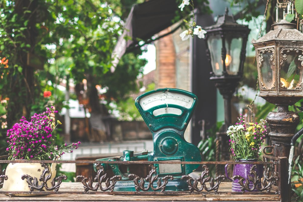Image courtesy of pexels.com