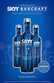 Skyy Barcraft Ad.jpg