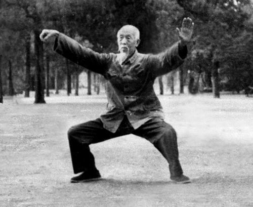 Liu in Single Whip from Janak.jpg