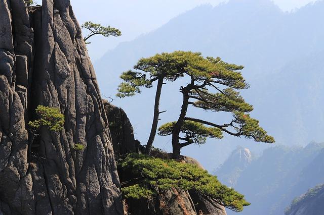 china-746374_640.jpg