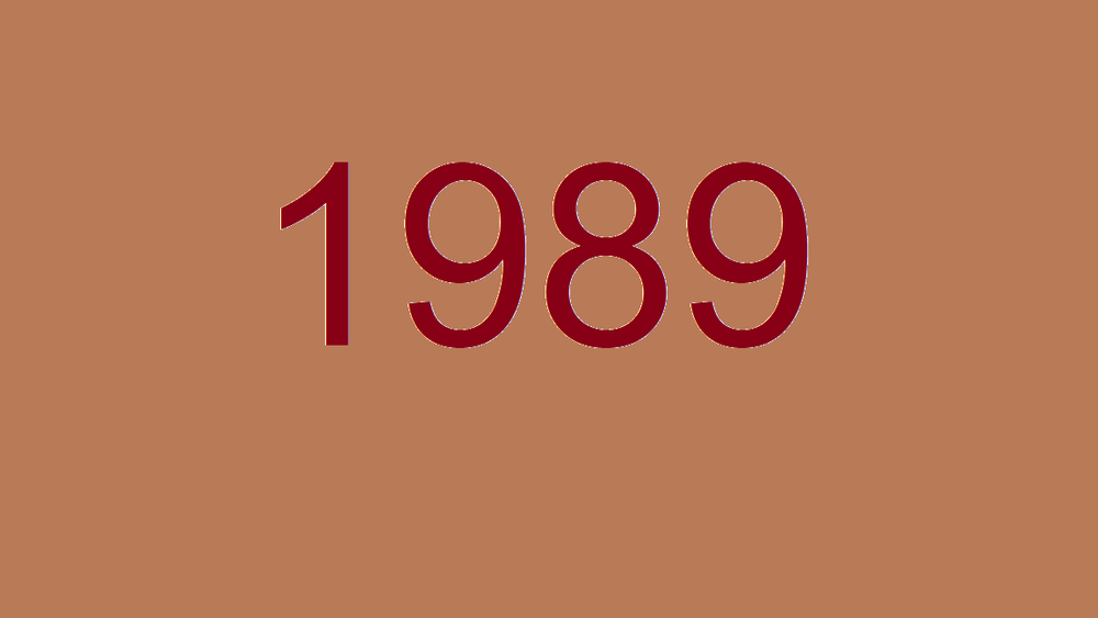 1989 pic.png
