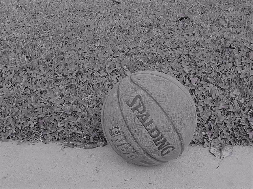 lone basketball.jpg