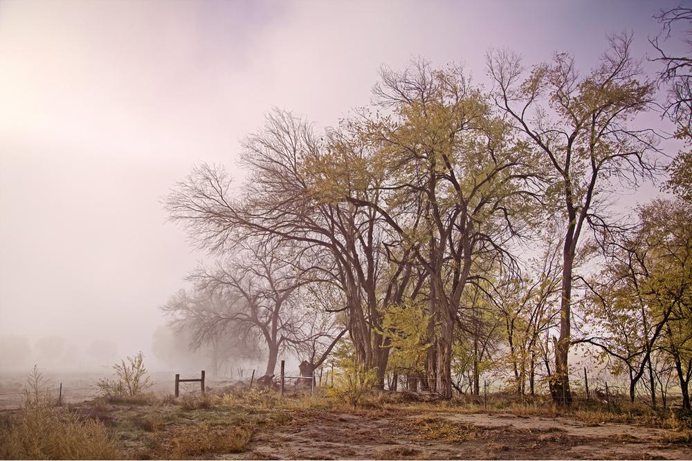 FogShiprock.jpg