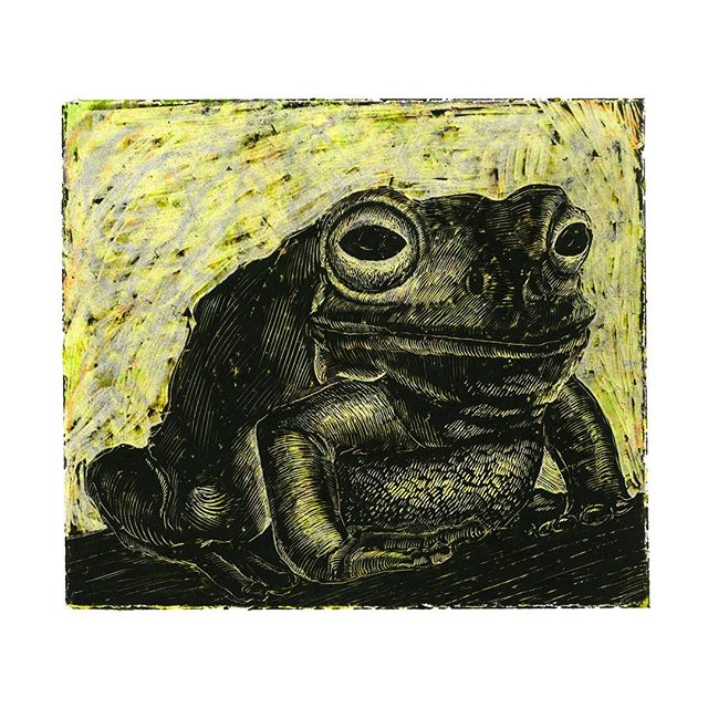 """Frog Study 2018 6"""" x 5 1/2"""" wax on bristol vellum  As some of you may know, my wife Mer and I (and soxybaby 😽) moved to New York City this year to pursue our masters degrees in music and fine arts. Since September I have been an MFA student in the Illustration as a Visual Essay program at the School of Visual Arts, NYC.  Adjusting to the new pace, the new place, and every new face has been a lot, to say the least. In the midst of the changes, I have been making art and exploring my visual vocabulary. Until now, I haven't had much time to post, but over the next few weeks I will be sharing some of the things I have been working on. Keep an eye out for some new works, some old works, and some reworked works.  Thanks for listening, looking, and being you. ❤️ #lukewohlgemuth #illustration #SVANYC #NYC #art #illustrationartists #illustratorsoninstagram #mfaillustration"""