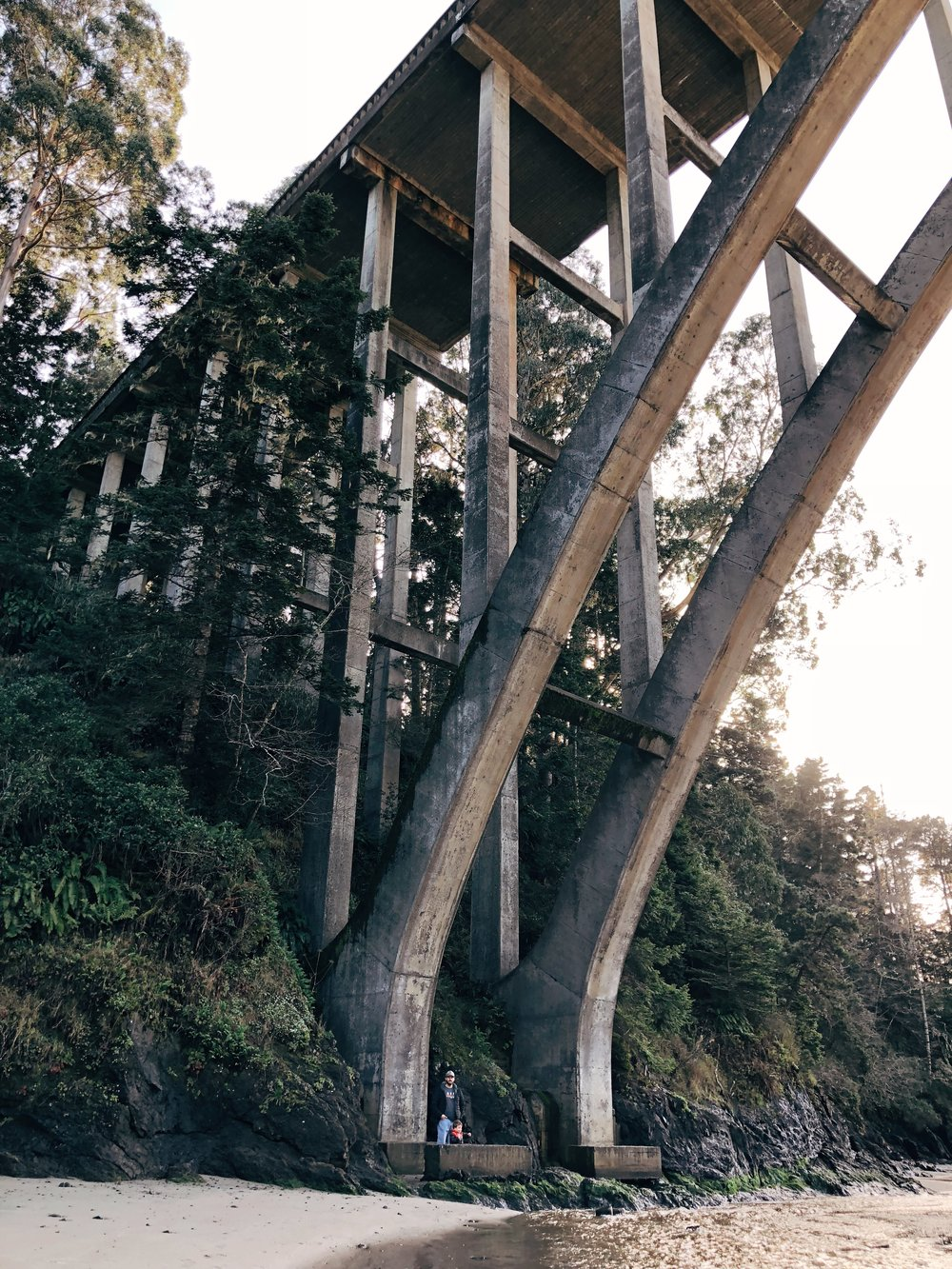the-curiosity-project-blog-mendocino-road-trip-with-kids-18.jpg
