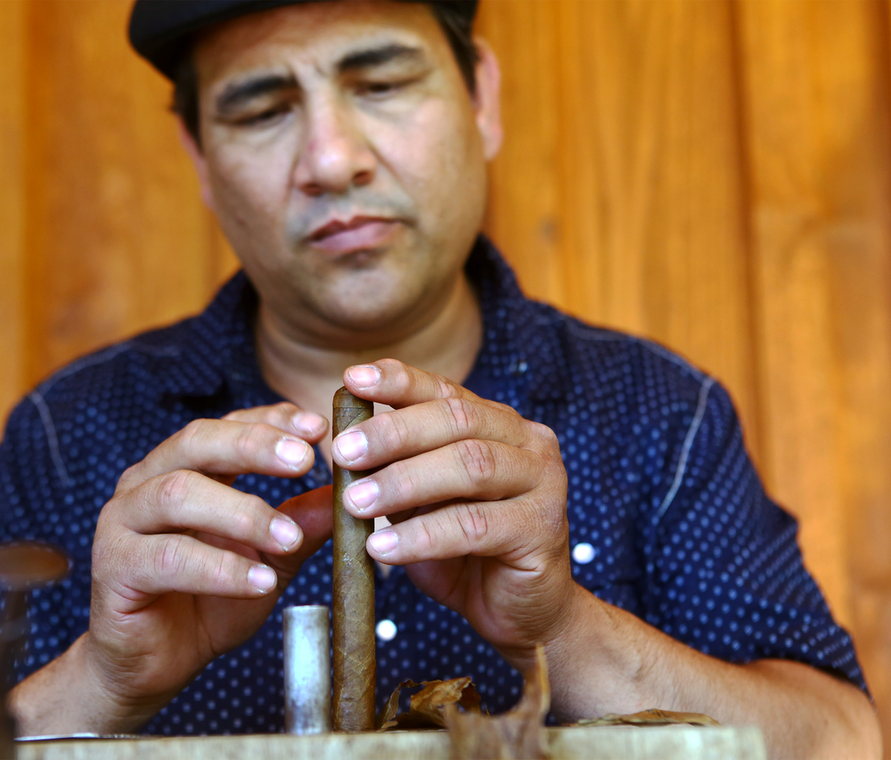 Master cigar roller Juan Carlos originally of Havanna, Cuba puts the finishing touches on the end of a cigar during the Father's Day barbecue hosted by Seven Mountains Wine Cellars on Sunday, June 19, 2016.