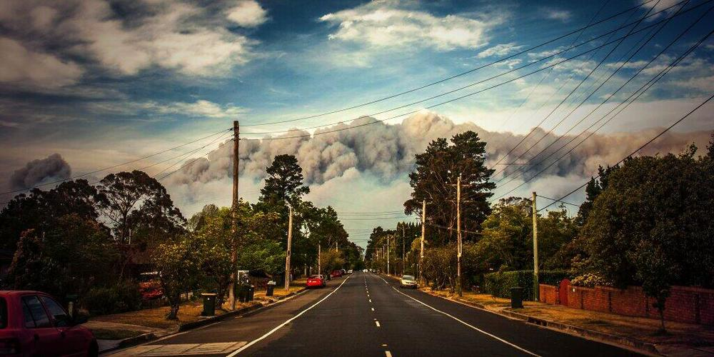 @coopesdetat Amy Coopes, NSW Bushfires, Oct13