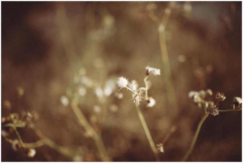 TiposPhotographyServices_Fotografodebodaalicante_NadiayCurro_18.jpg