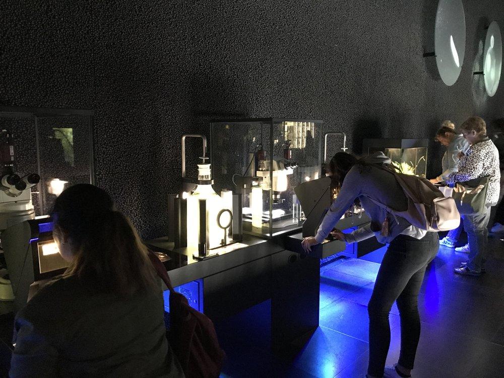 Micropia, Artis, De Museumpodcast