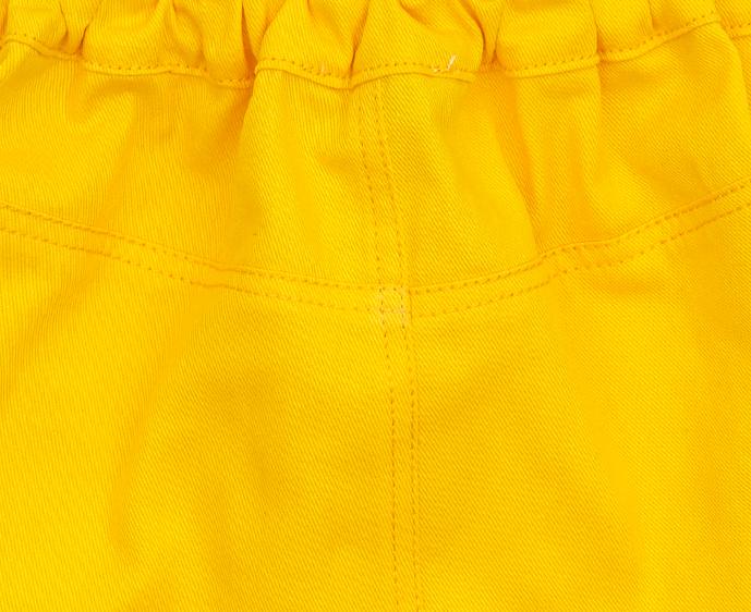 Gigi canary close up.jpg