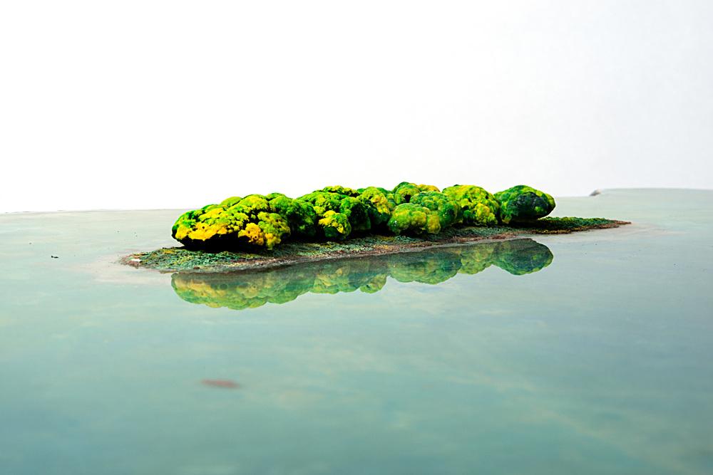 PESCE JULY 2012 _27.jpg