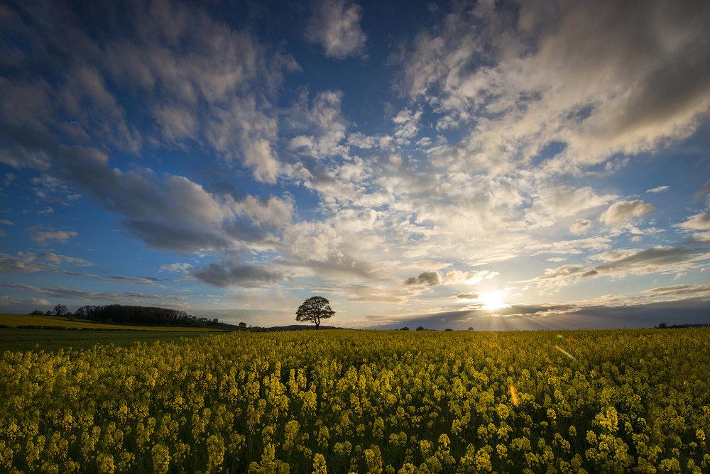 Nottinghamshire 30.jpg
