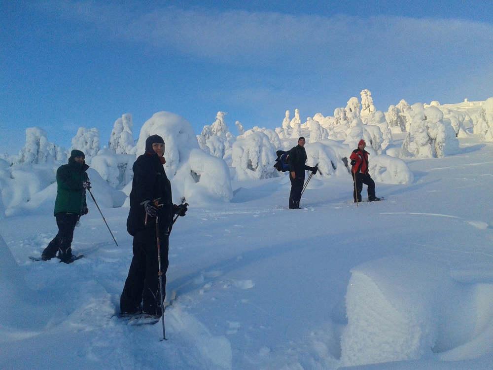 Arctic Safari Lapland 2