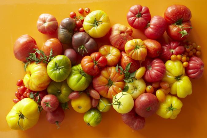221920-675x450-variety-of-tomatoes.jpg