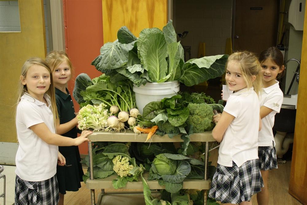co-living comunidad inteligente educación alternativa children as a whole green schools