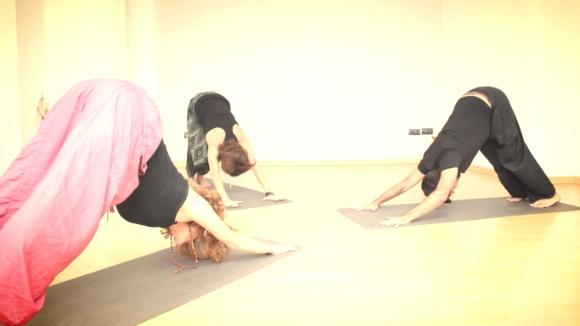 pandorahub yoga